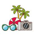 vacations ball sunglasses camera palms vector image vector image