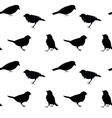 black and white seamless pattern with birds vector image vector image
