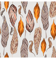 Feathers in vector image vector image