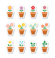 Flower plant in pot icons set vector image vector image