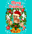 merry christmas holidays owl greeting card vector image