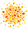 orange autumn leaves round splash isolated vector image vector image