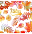 Autumn Calligraphy sale on detailed leafs vector image vector image