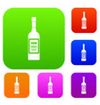 bottle of vodka set collection vector image vector image