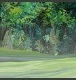 cartoon green dense summer forest with empty vector image