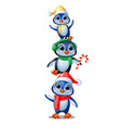 cute penguins in christmas costumes isolated on vector image