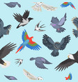 different wing wild flying birds seamless pattern vector image vector image