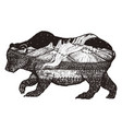double exposure bear with mountains space vector image