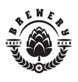 monochrome with hops for beer vector image vector image