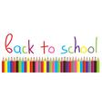 pencils school vector image vector image