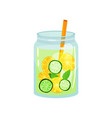 refreshing cocktail with green mint leaves slices vector image vector image