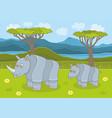 rhinoceros family vector image