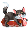 sly striped cat licks sausage isolated on white vector image