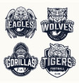 sport teams vintage emblems vector image vector image