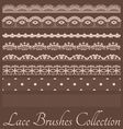 lace setsh vector image