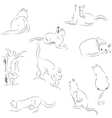 Cats sketches set vector image vector image