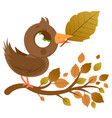 cute bird in autumn on a branch with dry leaves vector image vector image