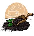Dry black tea leaves vector image