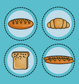 food with carbs design vector image