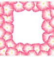 pink morning glory flower border vector image vector image