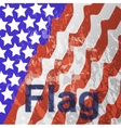 - USA flag in white background vector image vector image