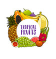 exotic fruits frame banana papaya grapes guava vector image vector image