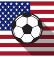 football icon with United States flag vector image vector image