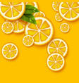 orange fruits background sliced orange pieces vector image