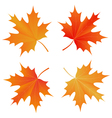set of autumn maple leaf vector image