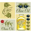 set of design elements for olive oil vector image vector image