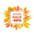 Autumn sale -50 off icon