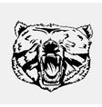 bear 01 vector image vector image