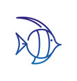 fish caribbean marine life thick line blue vector image vector image