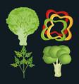 Healthy food vegan icons