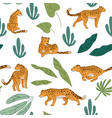 leopards with leaves and tropical foliage park vector image