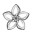 lily exotic flower icon simple style vector image
