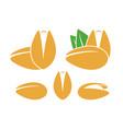 pistachio logo vector image vector image