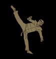 taekwondo high kick action with guard equipment vector image vector image