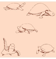 Turtles Pencil sketch by hand Vintage colors vector image