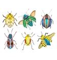 Watercolor beetles vector image vector image