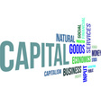 word cloud capital vector image vector image