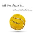 Yellow tennis ball vector image