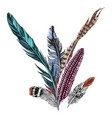 colorful hand drawn feathers on white background vector image vector image