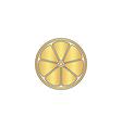 lemon computer symbol vector image vector image