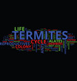 Life cycle of termites text background word cloud vector image