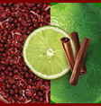 pomegranate cinnamon and lime vector image vector image