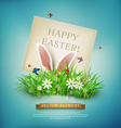 rabbit ears sticking out grass vector image vector image