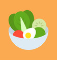 salad in bowl food and gastronomy set flat icon vector image