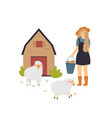 scene with a farmer girl taking care sheep vector image