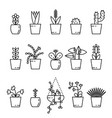 set of house plant isolated vector image vector image